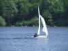zgr_regatta-08-045