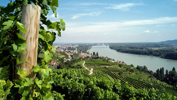 Kieler Österreich: Einladung zu Regatten Hollenburg/Donau und Traunsee